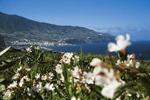 Pauschalreisen Santa Cruz de La Palma