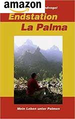 Mein Leben unter Palmen - Ein Bericht meiner Erfahrungen